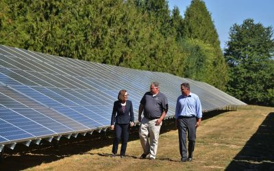 Going nuts for solar energy