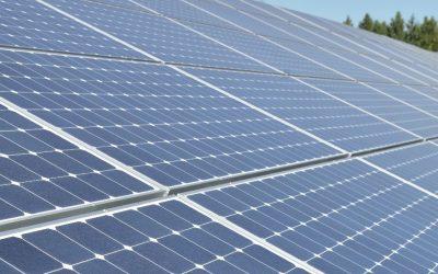 Oregon Hazelnut Company Celebrates Shift to Solar Power