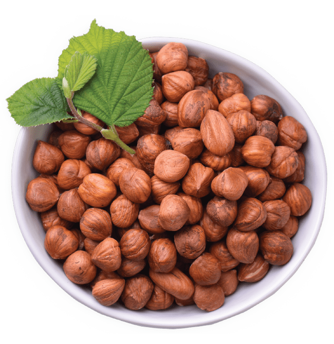 Hazelnuts Improve Older Adult's Micronutrient Levels, Study Shows