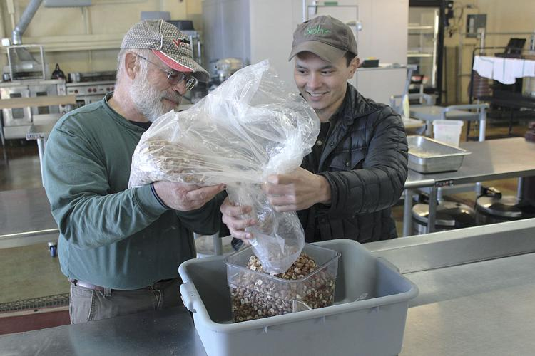 Organic Hazelnut Cooperative